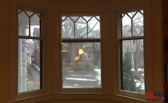 3 Important Reasons to Read Window Reviews Before Replacing Anything