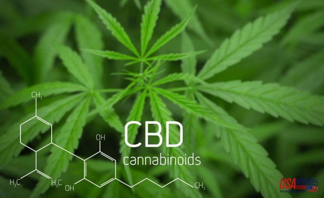 What Are The Different Ways You Can Take CBD?