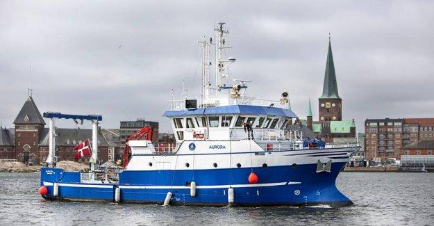 Oxygen deficiency major problem in Danish waters