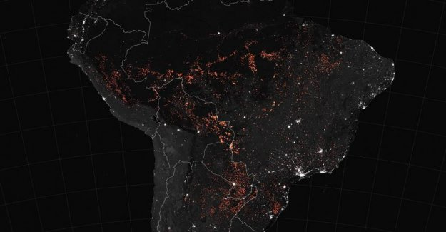 The amazon is burning: Nasa photo reveals the scale