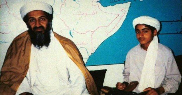 Trump confirms: Osama bin Laden's son is dead