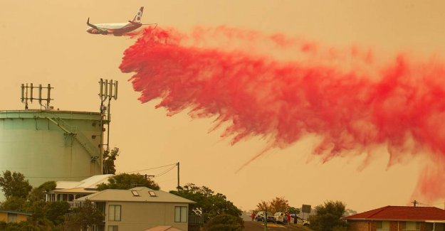 Australia ravaged by fires: - They are really dangerous