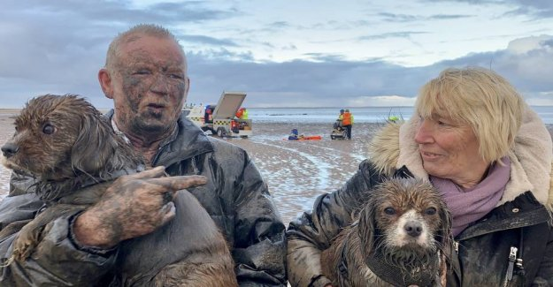 Couple with two dogs trapped in mud: - I blame my wife