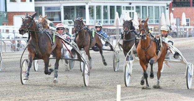 Betting tips: Hit a six in Aarhus