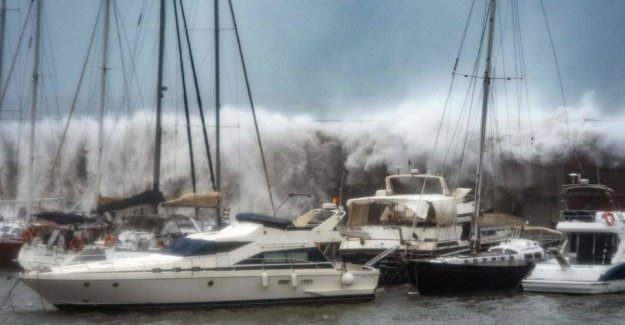 Severe winter storm: at Least four dead