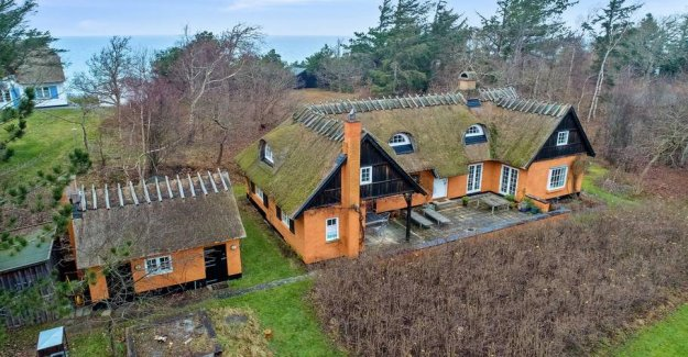Do you have any advice? Windeløvs crazy cottage for sale again