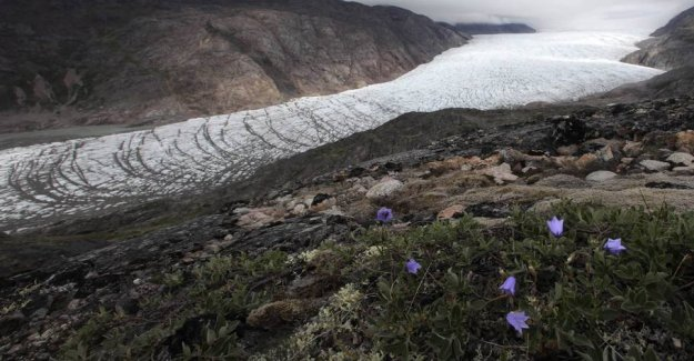62-year-old woman killed in Greenland - the 18-year-old man is arrested