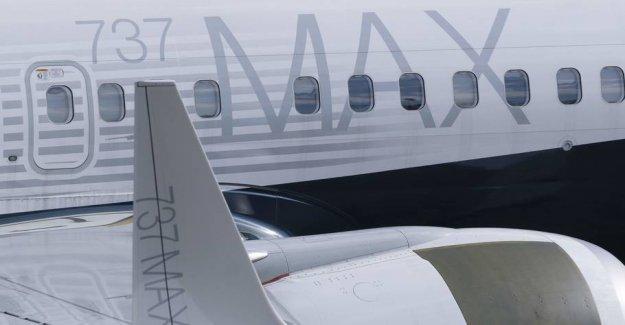 Company slaughtered after plane crash