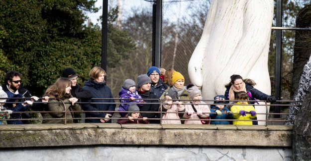 Danish zoological gardens closes for visits during the coronaudbrud