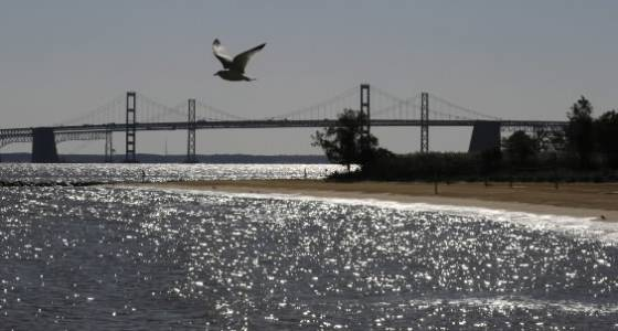 Bay cleanup must factor in climate change