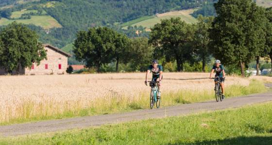 Bicycle through one of Italy's great food regions with Border Grill's Mary Sue Milliken