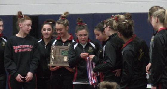 Brecksville's Tessa Phillips takes all-around, Bees win OHSAA district gymnastics crown