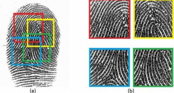 Computer scientists are developing a 'master' fingerprint that could unlock your phone
