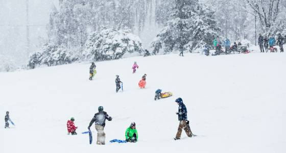 For first time in 48 years, Seattle out-snows Minneapolis