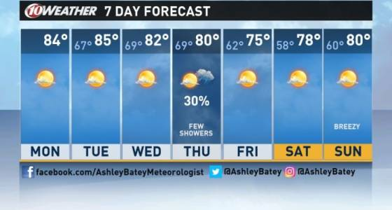 Forecast: Warm, dry workweek in Tampa Bay until cooler temperatures arrive in time for weekend