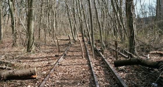 Park-rich Queens needs trains more than green space