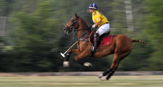 Polo mourns women's star Hale