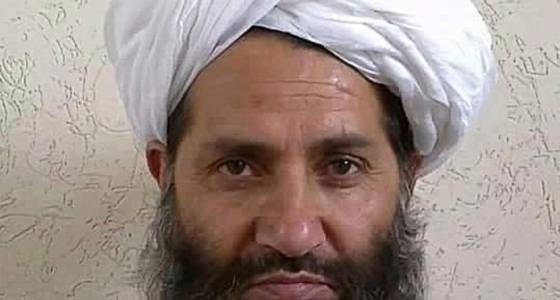 Taliban leader encourages people today to plant trees