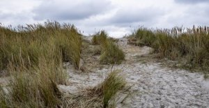 Two men arrested in case of vandalism against the dune