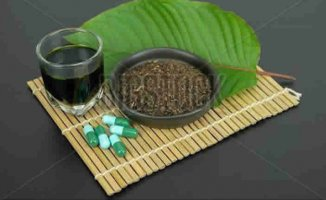 Kratom Tea: How Is It?