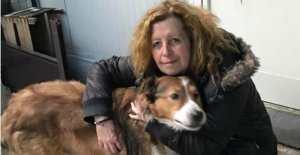 Elizabeth Barbieri and others: who are the volunteers who bring dogs and cats to the north (and why they do)