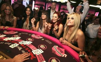 Online Gambling Fun Facts linked to Ireland