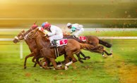 Indulging in the sport of horse racing