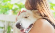 Rising Popularity of Pets: Making Americans Healthier